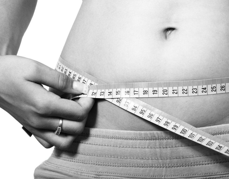 Fakten zum Fett und Fettabbau